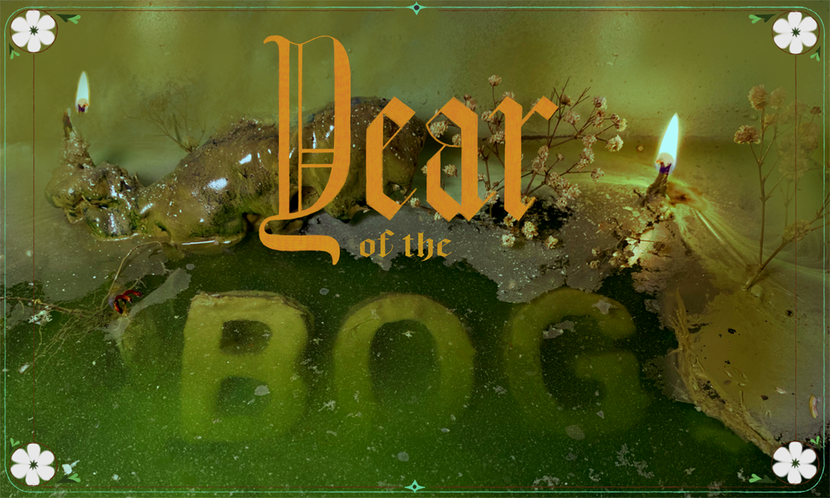 A photograph that reads 'Year of the Bog'. The word Bog is suspended in a boggy substance, with natural and man-made green elements.